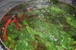 Бланшируем листья мангольда