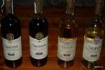Самые известные вина Самоса - сладкие мускаты