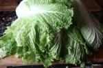 Китайский салат для приготовления кимчхи