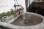 Вода и цветы: стиль Женевы