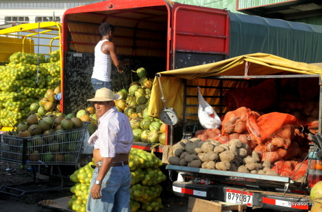 Оптовый рынок Панамы