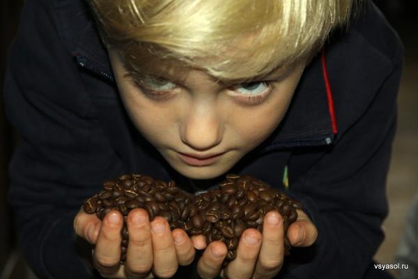 Даня набрал полные пригоршни панамского кофе