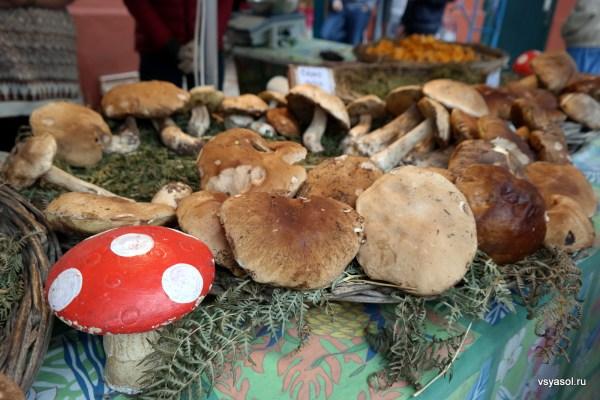 Ноябрь- сезон белых грибов в Стране Басков. Рынок в Сан-Жан-де-Люз