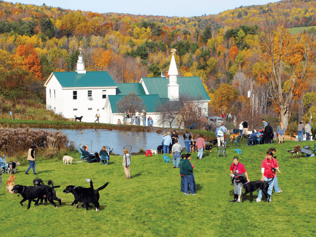 Image of Dog Mountain Chapel and foliage at Dog Mountain, Home of Stephen Huneck Gallery