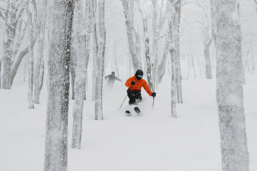 Image of skiers in the trees