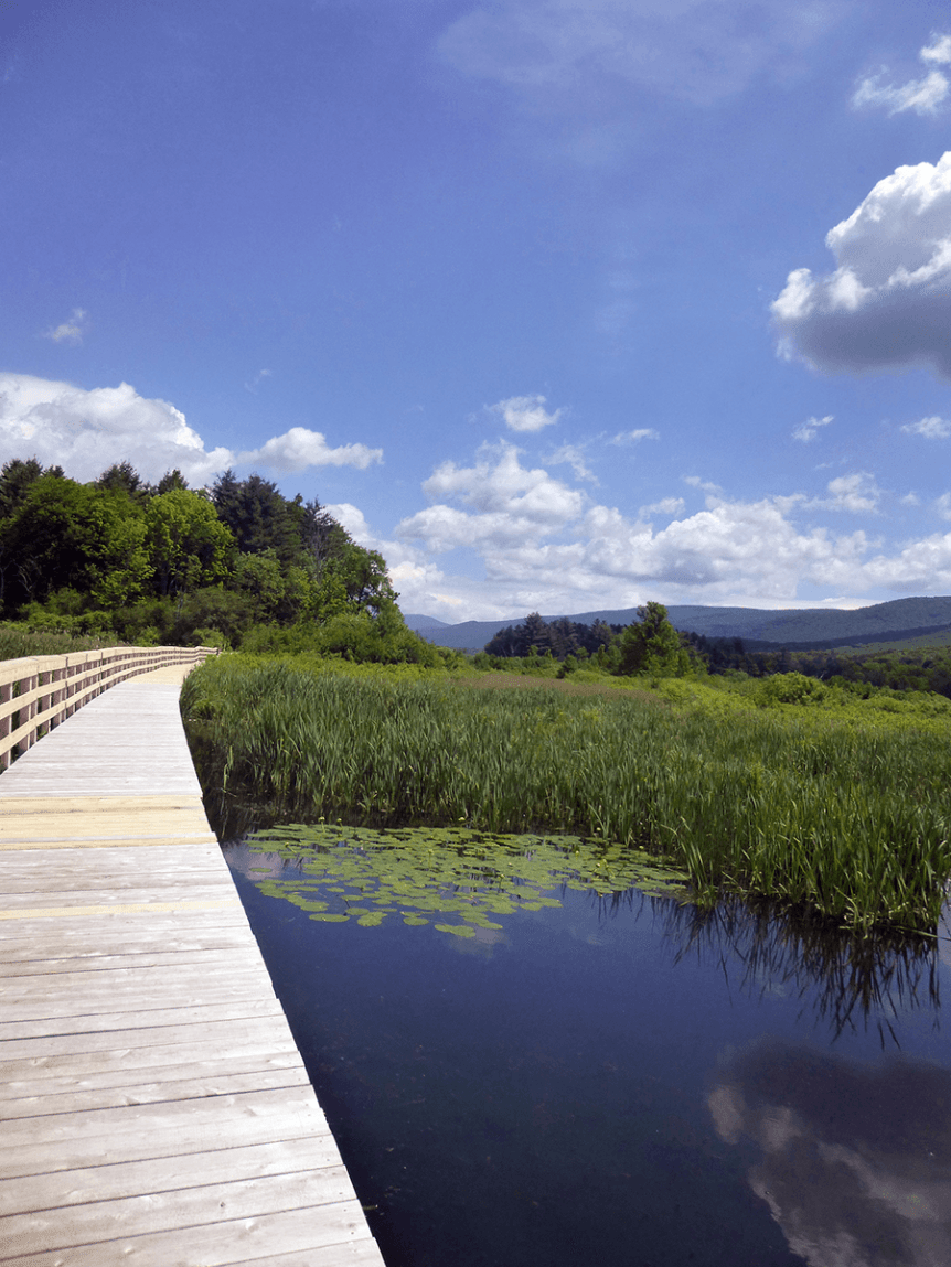 Image of floating boardwalk at Hildene, The Lincoln Family Home