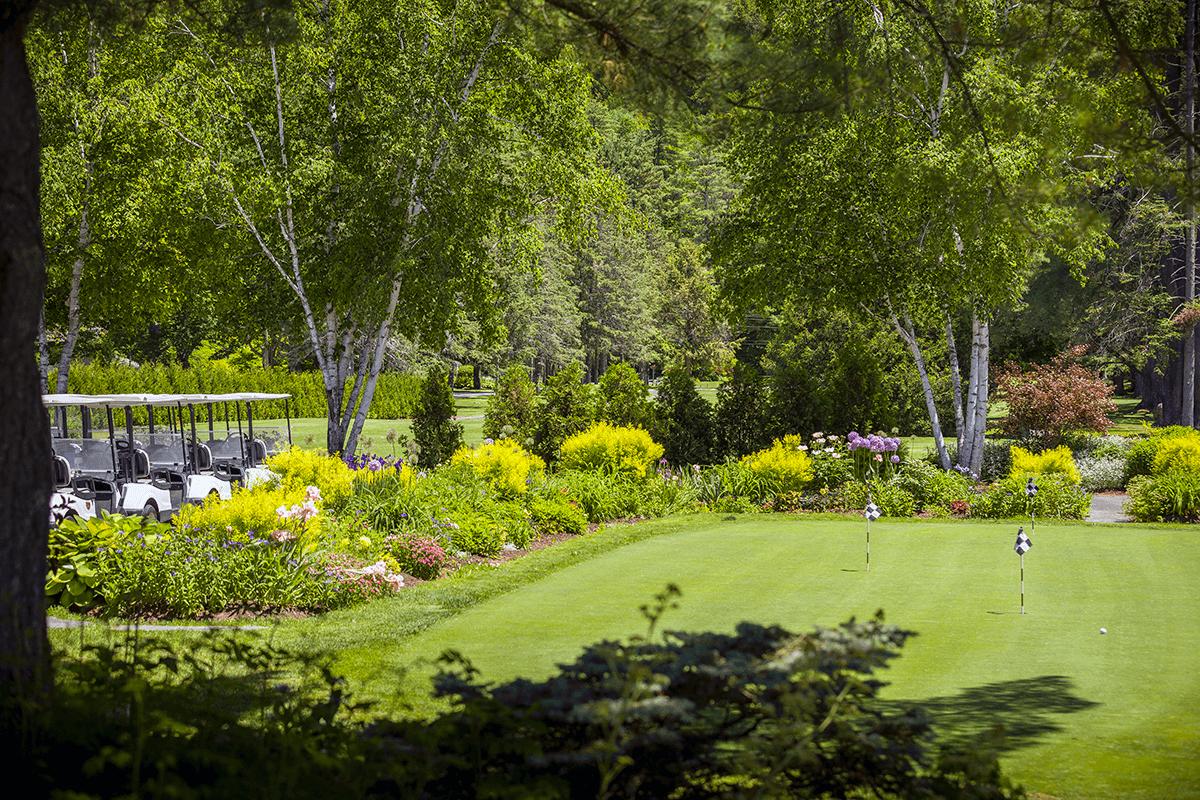 Image of putting green and carts at Lake Morey Resort