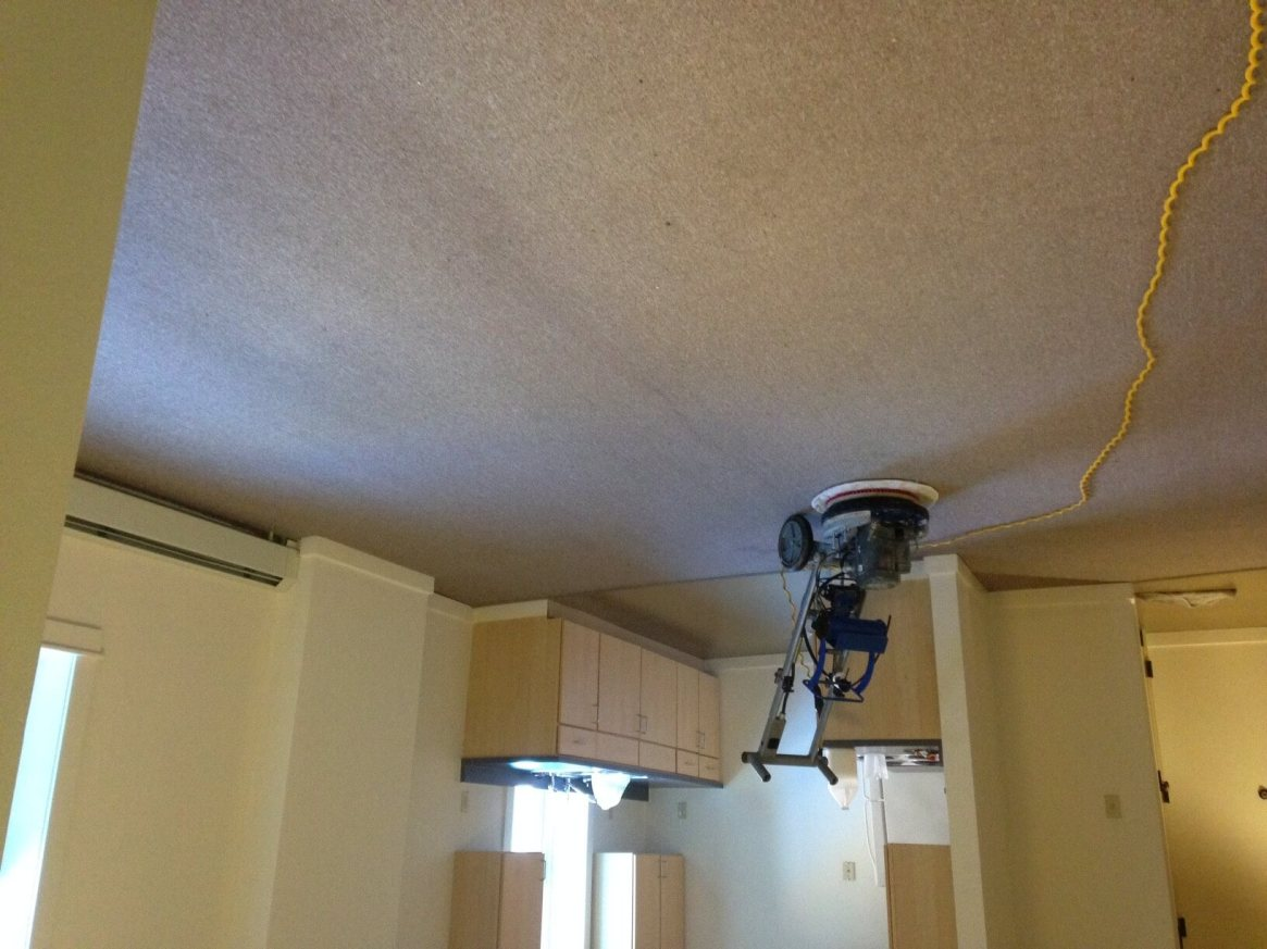Carpet Cleaning Rotary Extraction