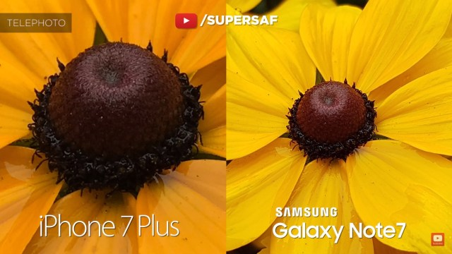 iphone-7-plus-vs-galaxy-note-7-sample-3-zoom-1