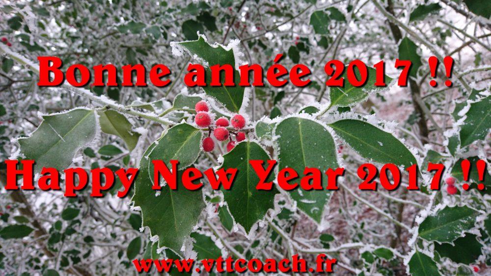 Bonne année!!!!