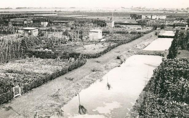 Overzicht over het complex, de Wilgenlaan. Jaren 40.