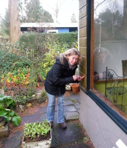 Klussende tuinvrouwen