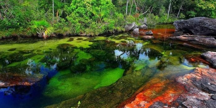 Resultado de imagen para El río de los cinco colores
