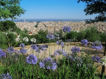 Barcelona desde el Park Guell. Imagen: ©depositphotos.com/icon72