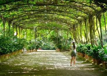 Jardín botánico, Málaga. Imagen: ©depositphotos.com/brendan_howard