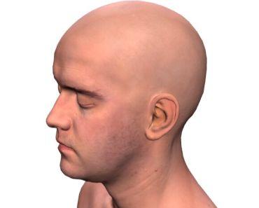 3D Model Viewer For Vue.js