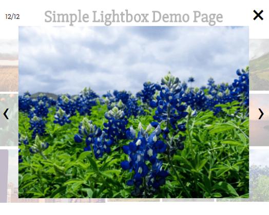 Vue Easy Lightbox