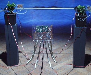 a solo exhibition 2010 Saturn Analogy of Trans Urgency Hyperdimensional Hexagon Theory-2