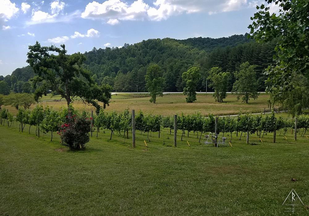 Hightower Creek Vineyards. 7150 Canaan Dr, Hiawassee, GA 30546