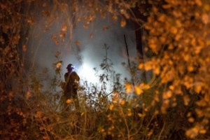 A San Bernardino County Firefighter is seen through heavy brush putting out a warming fire that got out of control on December 3, 2016. (Gabriel D. Espinoza, Victor Valley News)
