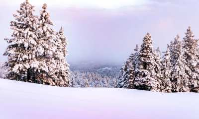 snow play closed in local mountains covid 19