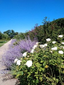 Milotice zámocká záhrada