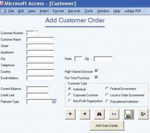 The designer has many GUI components that allow flexibility in designing input screens for the Web or other software packages. This example is from Microsoft Access.