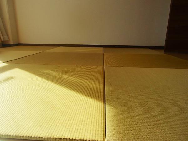 プレゼントした置き畳のサイズオーダー