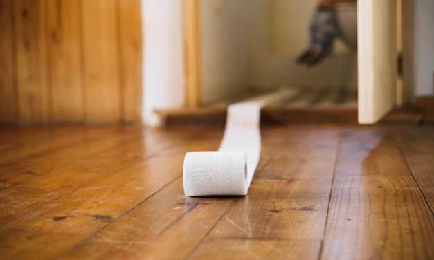 Journée mondiale des WC : les chiffres insolites