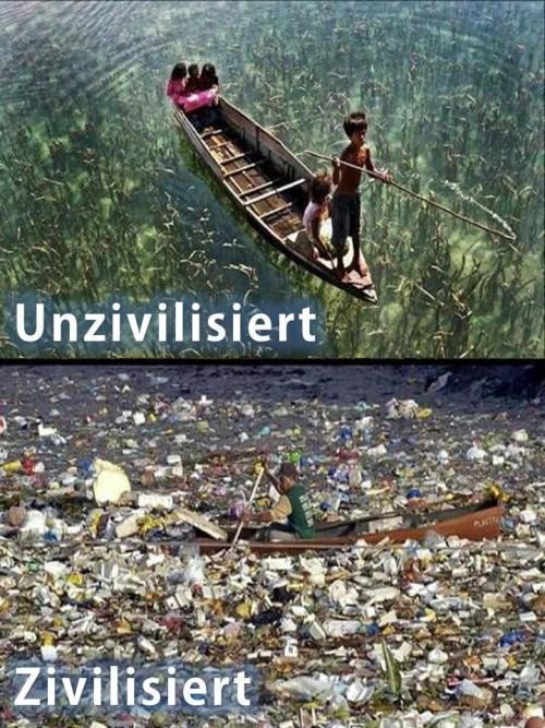 Konsequenzen unseres Plastikkonsums