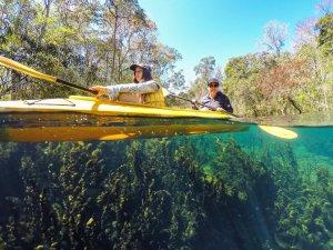 Kayak Wacissa Florida