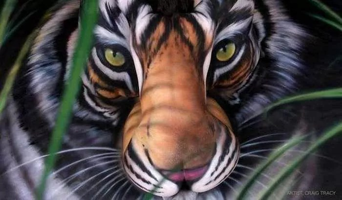 Incredible Tiger Body Art by Craig Tracy - 6 Pics -01