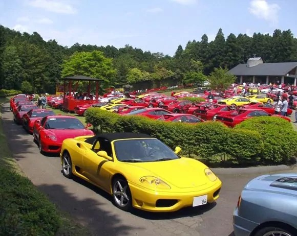 Funny Party Of Ferrari Cars That Will Blow Your Mind