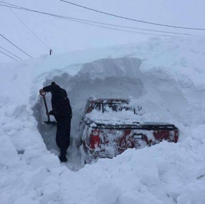 50 Funny Only in Canada Pictures That Will Make Your Day -10