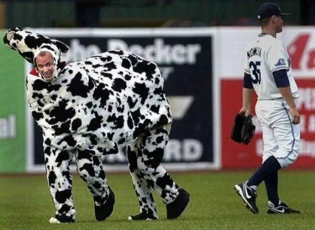 11 Funny Sport Moments Captured at Right Time -13