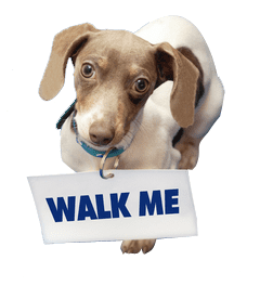 Dog Walking, dog holding sign asking, Walk Me