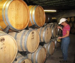 Chardonnay in American Oak Barrels