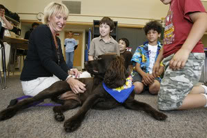 Social Benefit of Animal-assisted therapy