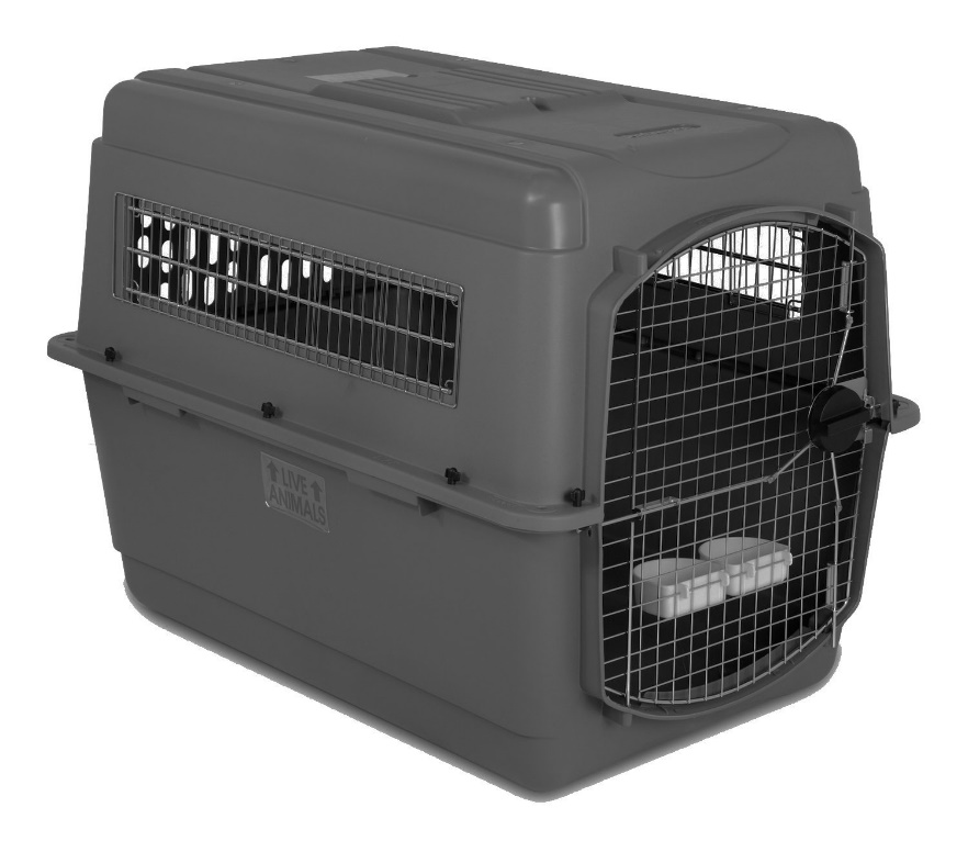 Carrier for dogs