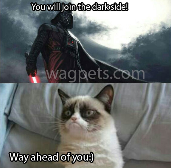 You will join the dark side! Way ahead of you:)