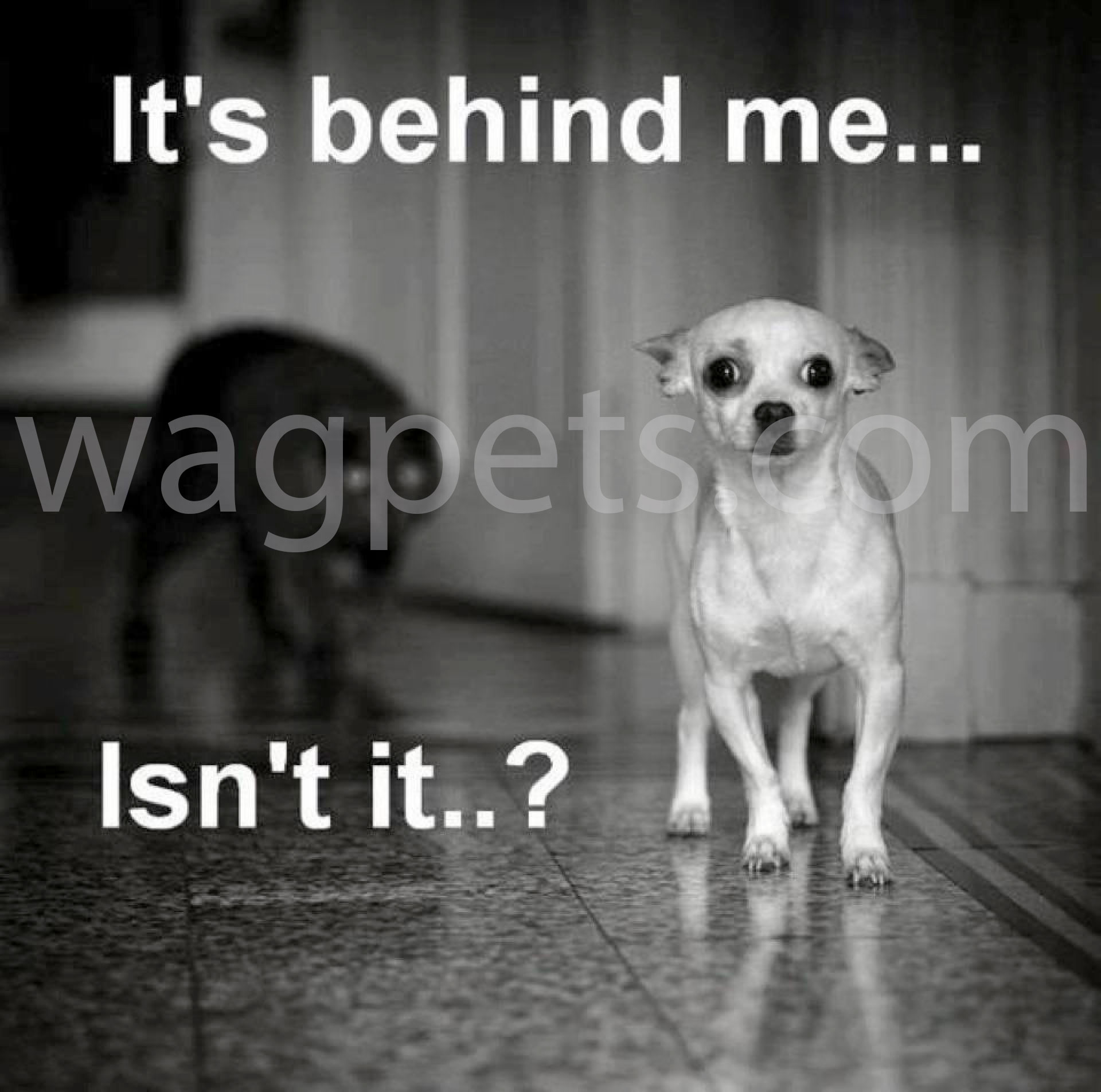 It`s behind me.. Isn`t it?...
