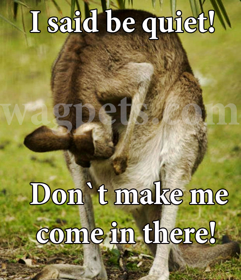 I said be quiet! Don`t make me come in there!