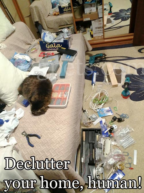 Declutter your home, human!