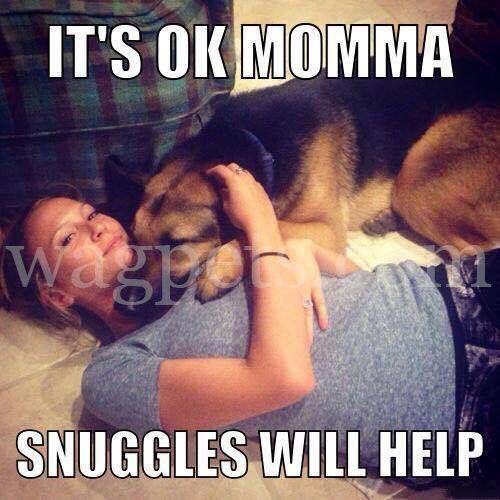 It`s OK Momma. Snuggles will help!