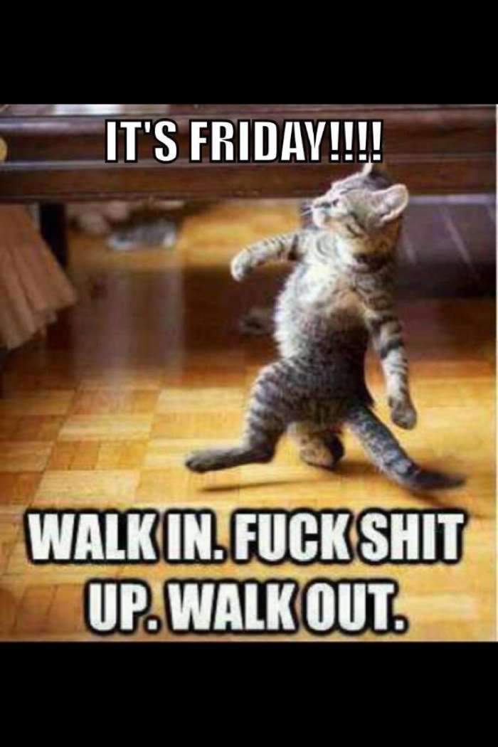 It's Friday! Walk in. Fuck shit up. Walk out.