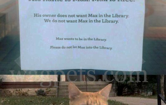*Please do not let in the cat*