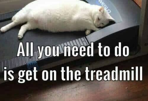 The motivational speaker said: All you need to do is get on the treadmill DONE!