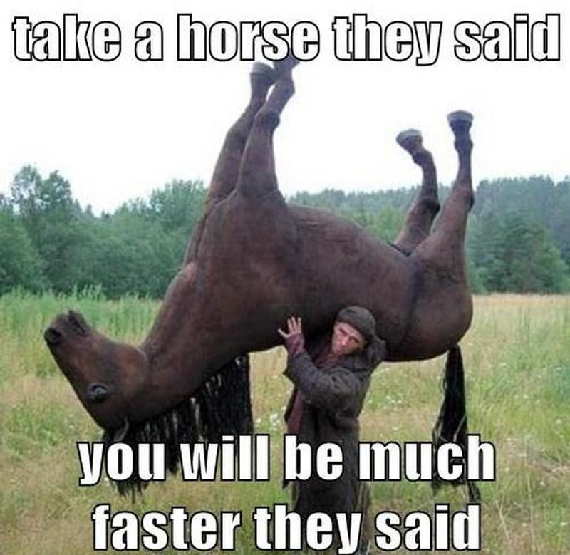 Take a horse they said you will be much faster they said