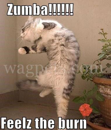 Zumba!!! Feelz the burn