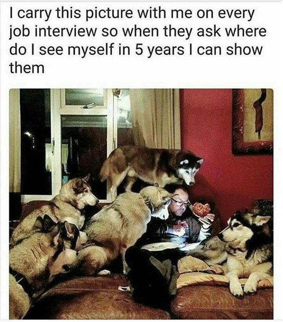 I carry this picture with me on every job interview so when they ask where do I see myself in 5 years, I can show them